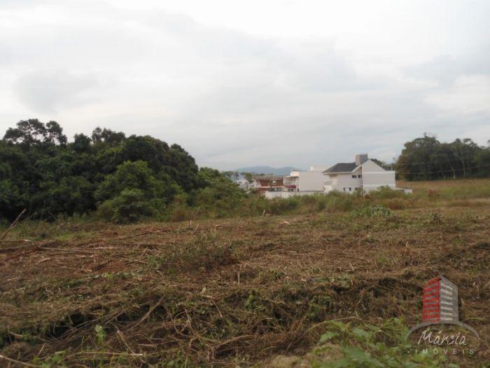 Terreno no bairro Universitário em Lajeado