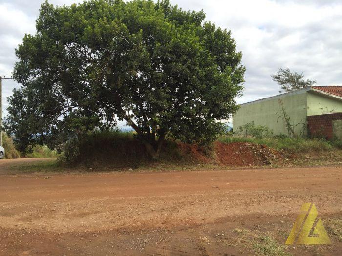 Terreno Pinheiros Estrela