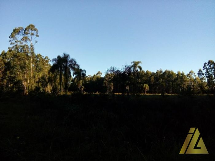 Área de Terras Linha Glória Fazenda Vilanova