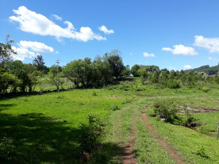 Rural - Chácara/Sítio de 4 dormitórios no bairro Boa Vista em Teutônia