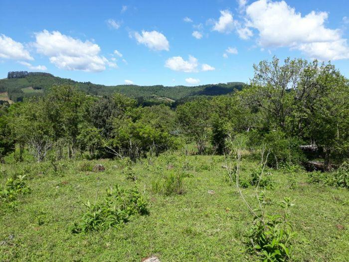 Rural - Chácara/Sítio no bairro Boa Vista em Teutônia