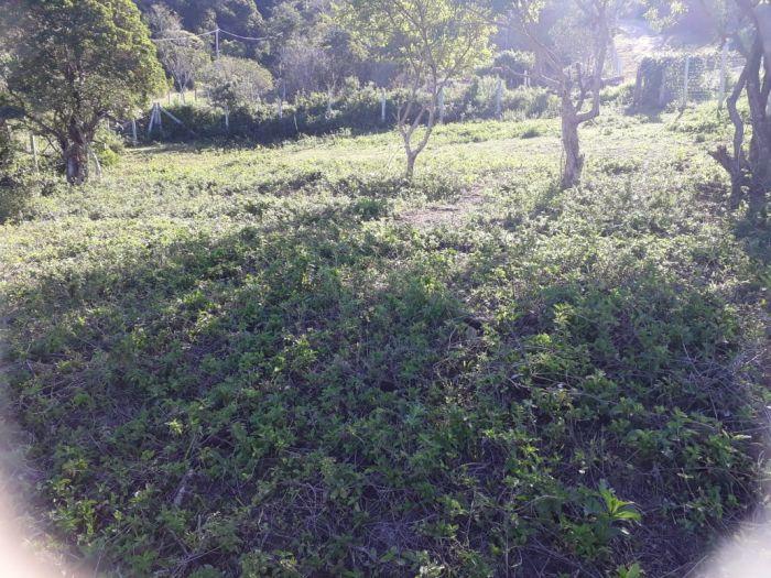Terreno em Garopaba